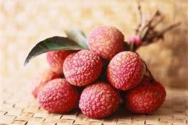 Vải BioGarden - Hoa quả sạch Việt Nam